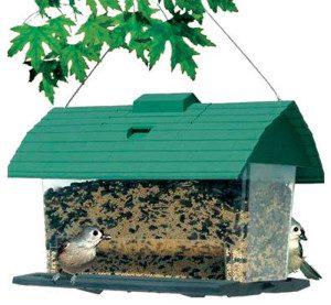 bird feeder house