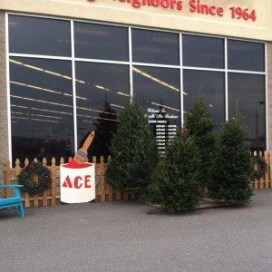 Real-Christmas-Trees-for-Sale-Weavers-Ace-Hardware-at-Douglassville