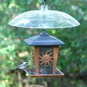 bird feeder dome